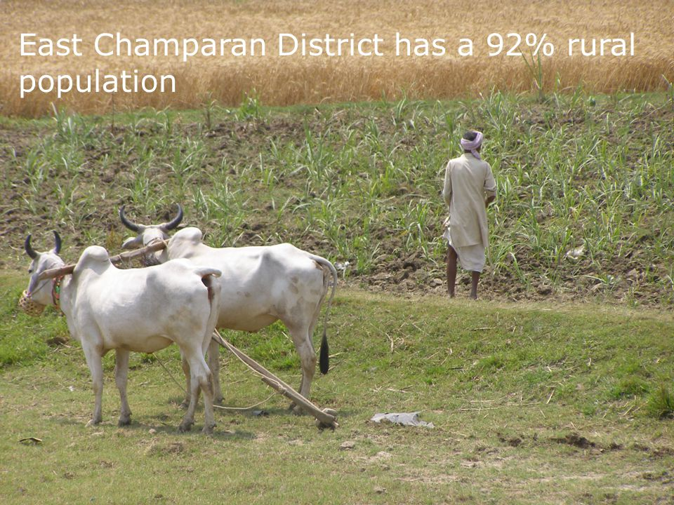 East Champaran District has a 92% rural population