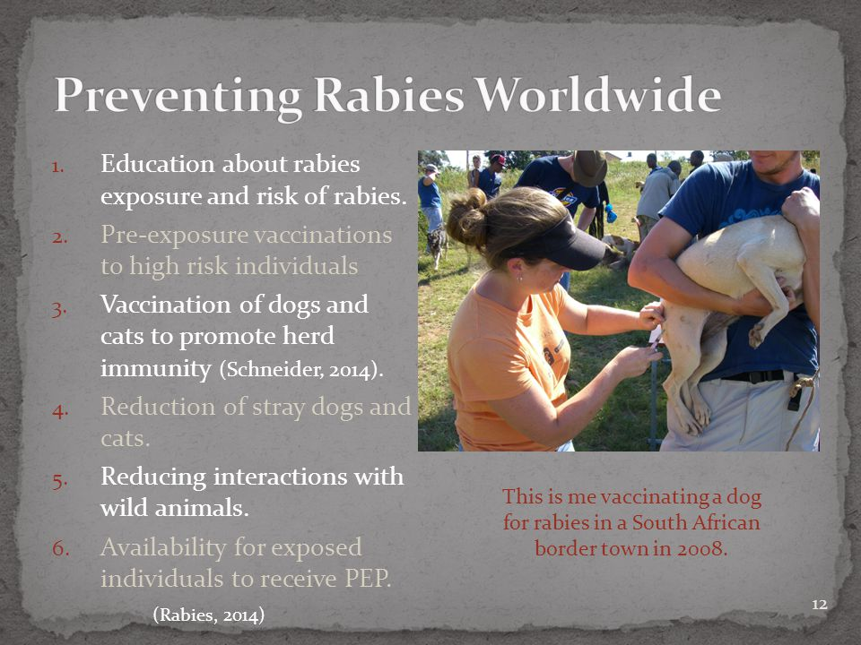 12 1. Education about rabies exposure and risk of rabies.