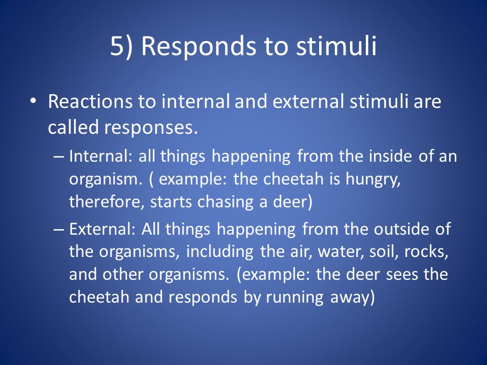 5) Responds to stimuli Reactions to internal and external stimuli are called responses. – Internal: all things happening from the inside of an organis