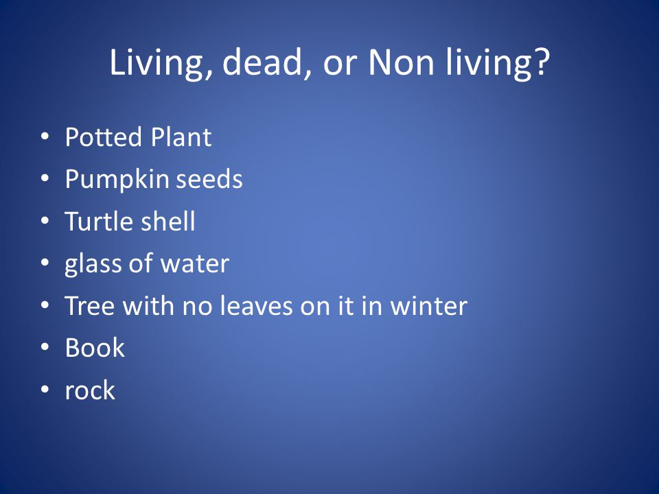 Living, dead, or Non living? Potted Plant Pumpkin seeds Turtle shell glass of water Tree with no leaves on it in winter Book rock