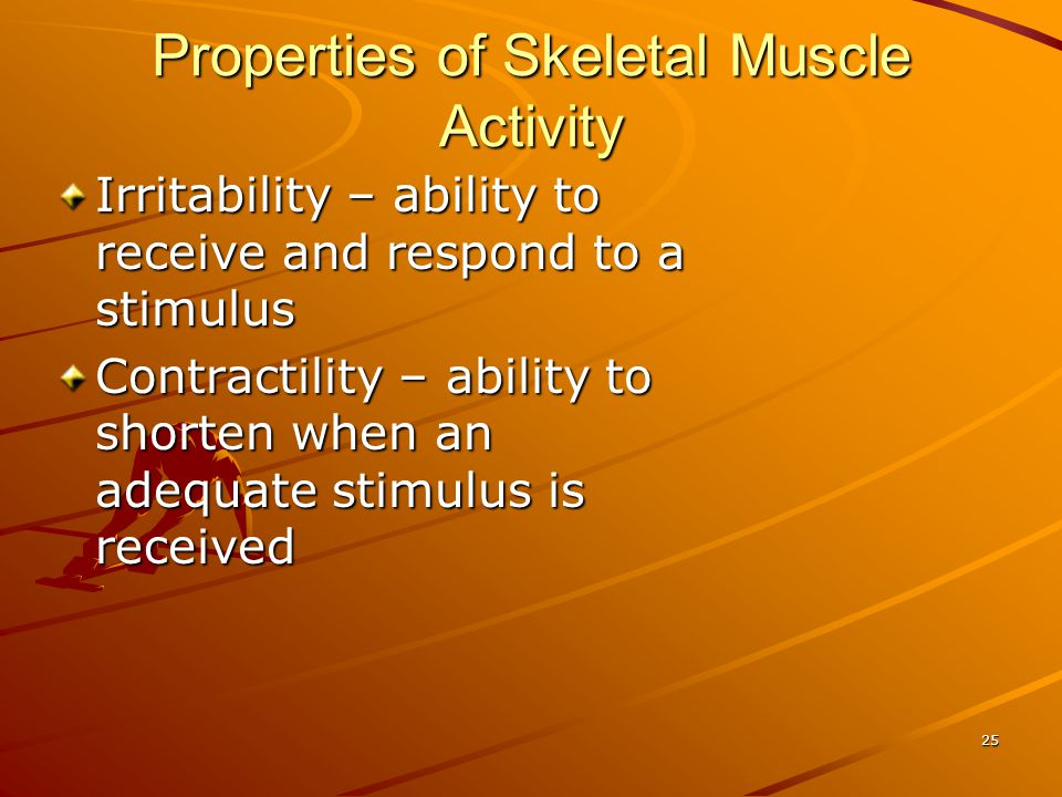Properties of Skeletal Muscle Activity Irritability – ability to receive and respond to a stimulus Contractility – ability to shorten when an adequate