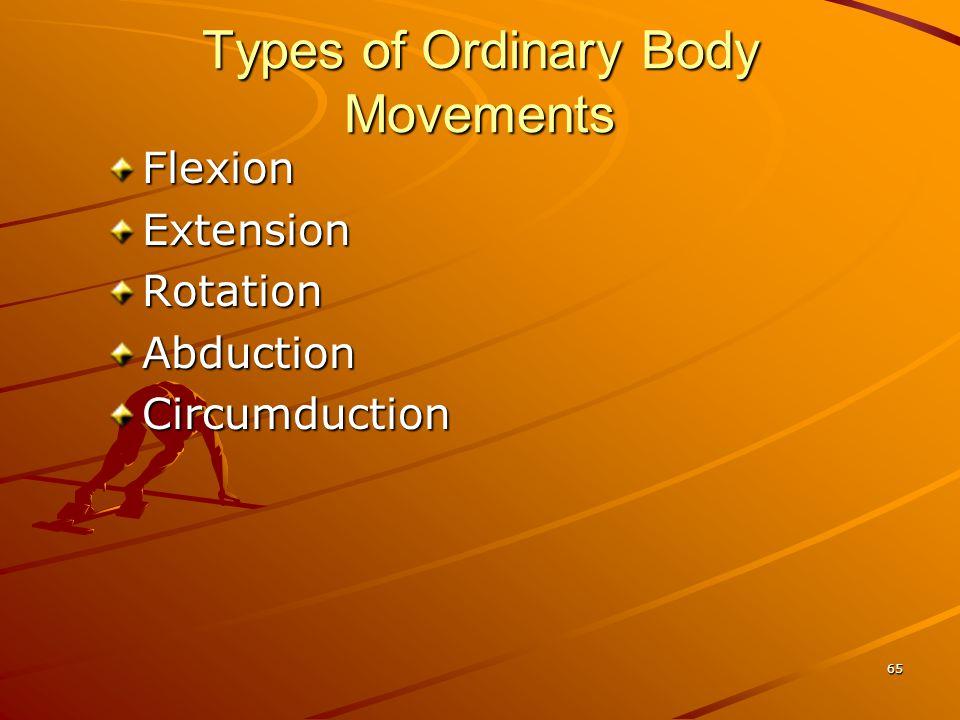 Types of Ordinary Body Movements FlexionExtensionRotationAbductionCircumduction 65
