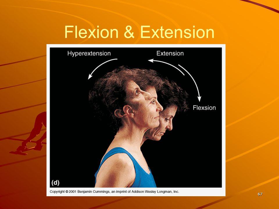 Flexion & Extension 67