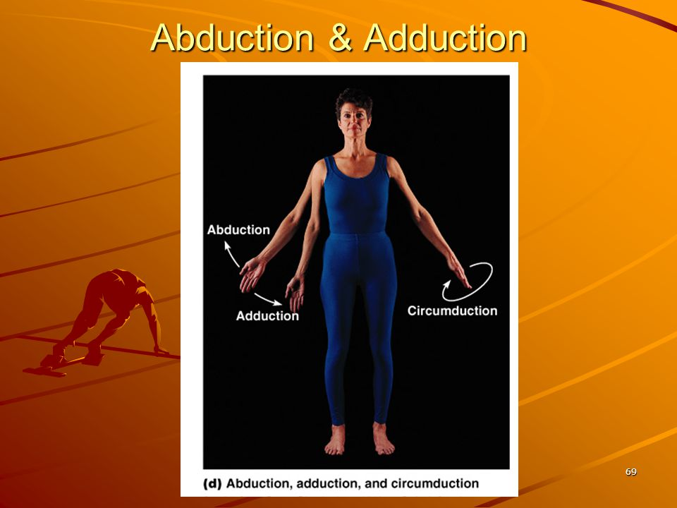 Abduction & Adduction 69