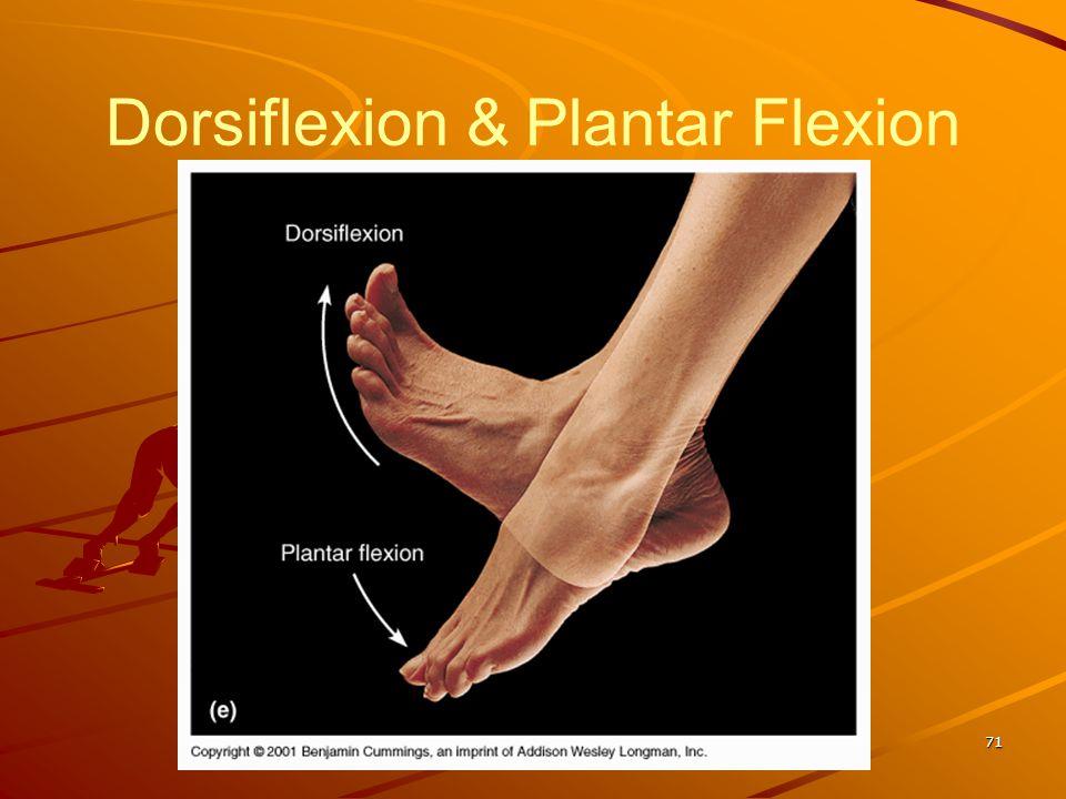 Dorsiflexion & Plantar Flexion 71