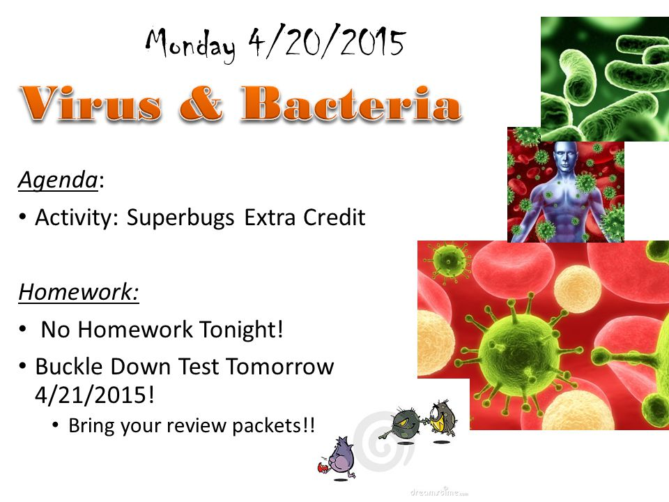Agenda: Activity: Buckle Down Exam Homework: Virus Most Wanted Poster due Friday April 24 th for 45 Points Tuesday 4/21/2015