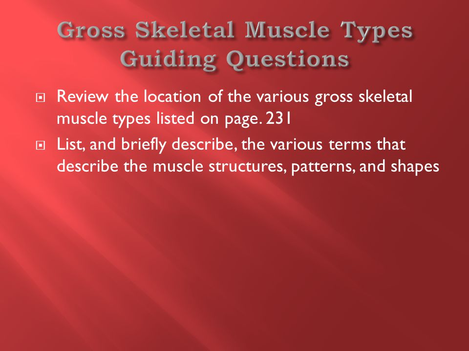  Review the location of the various gross skeletal muscle types listed on page.