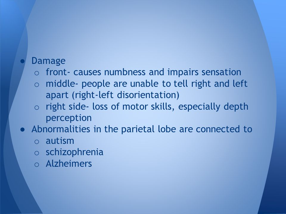● Damage o front- causes numbness and impairs sensation o middle- people are unable to tell right and left apart (right-left disorientation) o right s