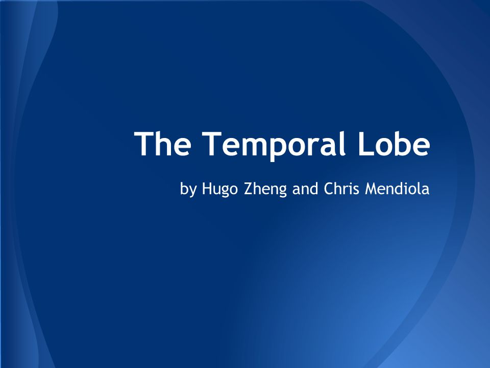 by Hugo Zheng and Chris Mendiola The Temporal Lobe
