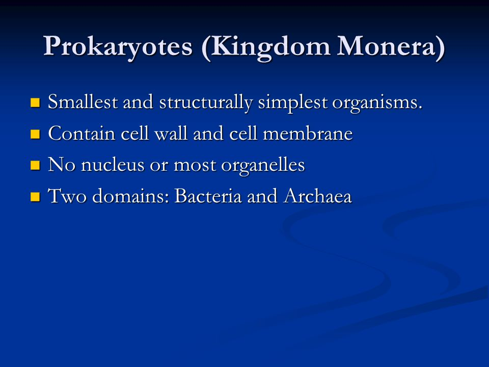 Prokaryotes (Kingdom Monera) Smallest and structurally simplest organisms.