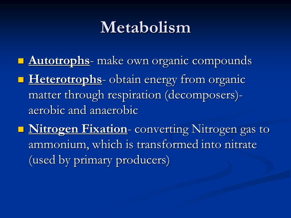 Metabolism Autotrophs- make own organic compounds Autotrophs- make own organic compounds Heterotrophs- obtain energy from organic matter through respi