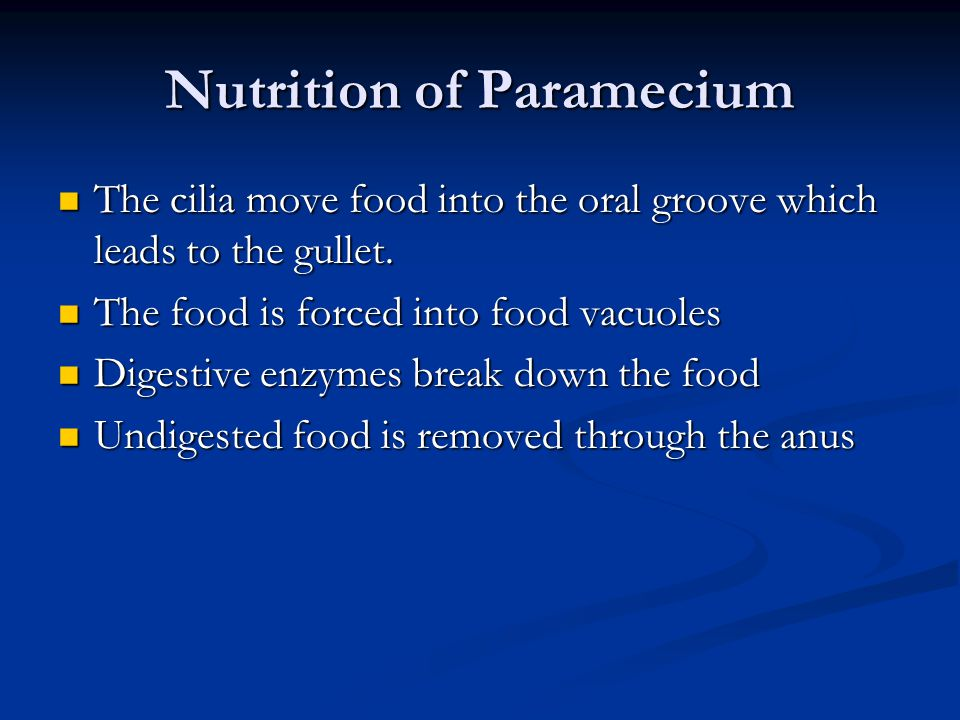 Nutrition of Paramecium The cilia move food into the oral groove which leads to the gullet. The cilia move food into the oral groove which leads to th