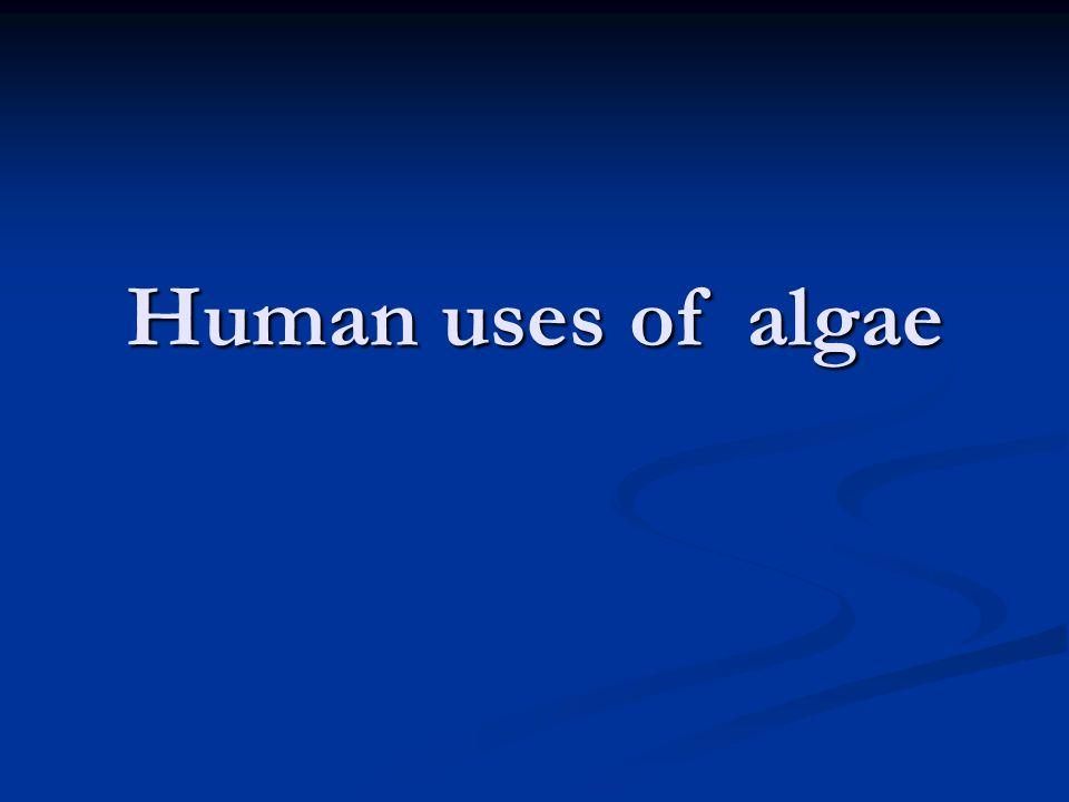 Human uses of algae