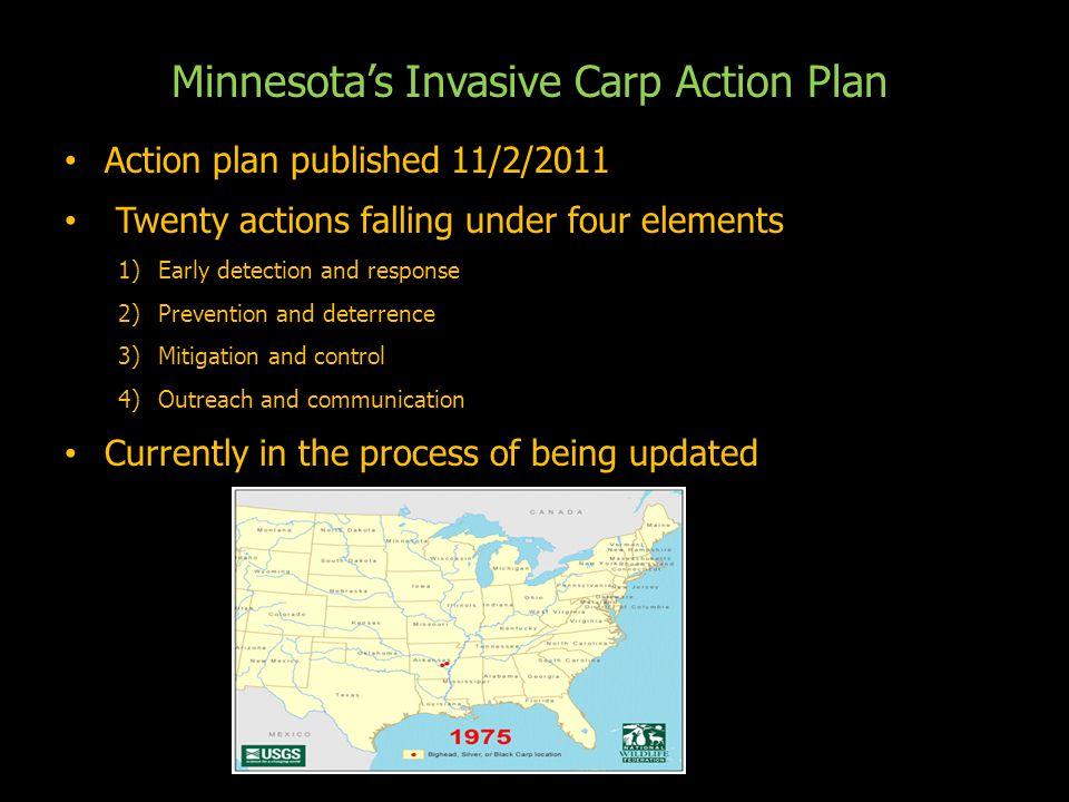 Minnesota's Invasive Carp Action Plan Action plan published 11/2/2011 Action plan published 11/2/2011 Twenty actions falling under four elements Twenty actions falling under four elements 1)Early detection and response 2)Prevention and deterrence 3)Mitigation and control 4)Outreach and communication Currently in the process of being updated Currently in the process of being updated