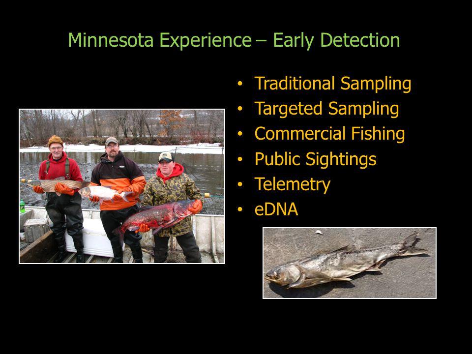 Minnesota Experience – Early Detection Traditional Sampling Traditional Sampling Targeted Sampling Targeted Sampling Commercial Fishing Commercial Fishing Public Sightings Public Sightings Telemetry Telemetry eDNA eDNA