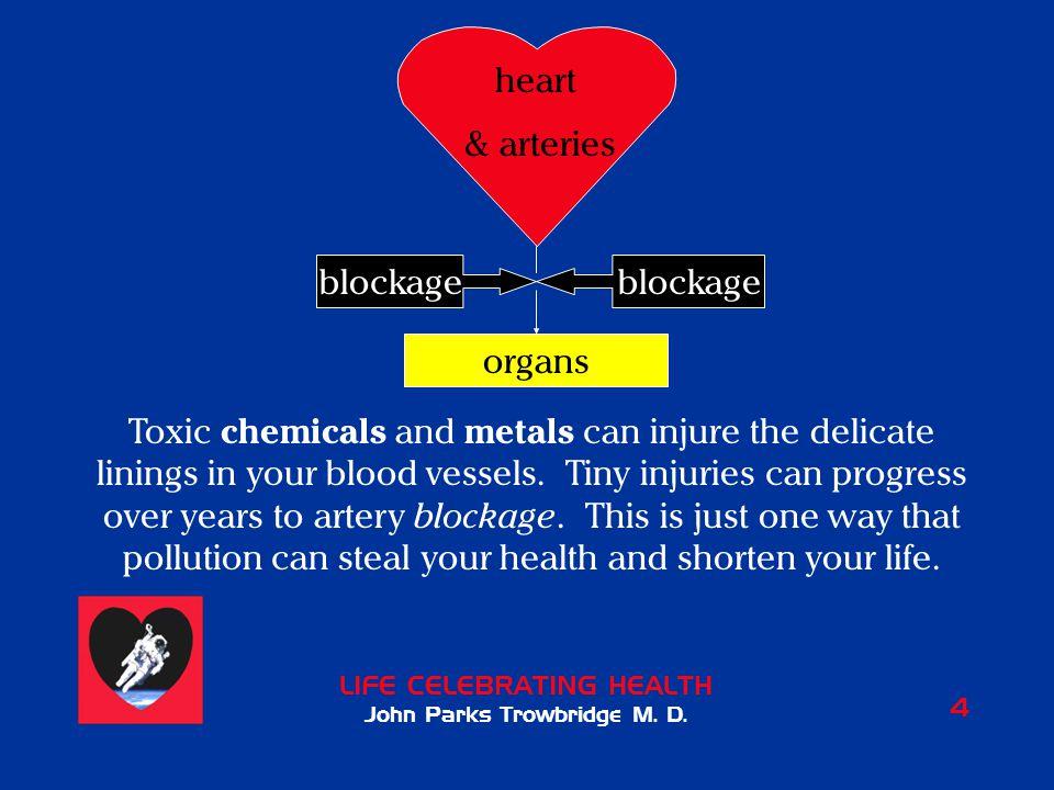 LIFE CELEBRATING HEALTH John Parks Trowbridge M.D.