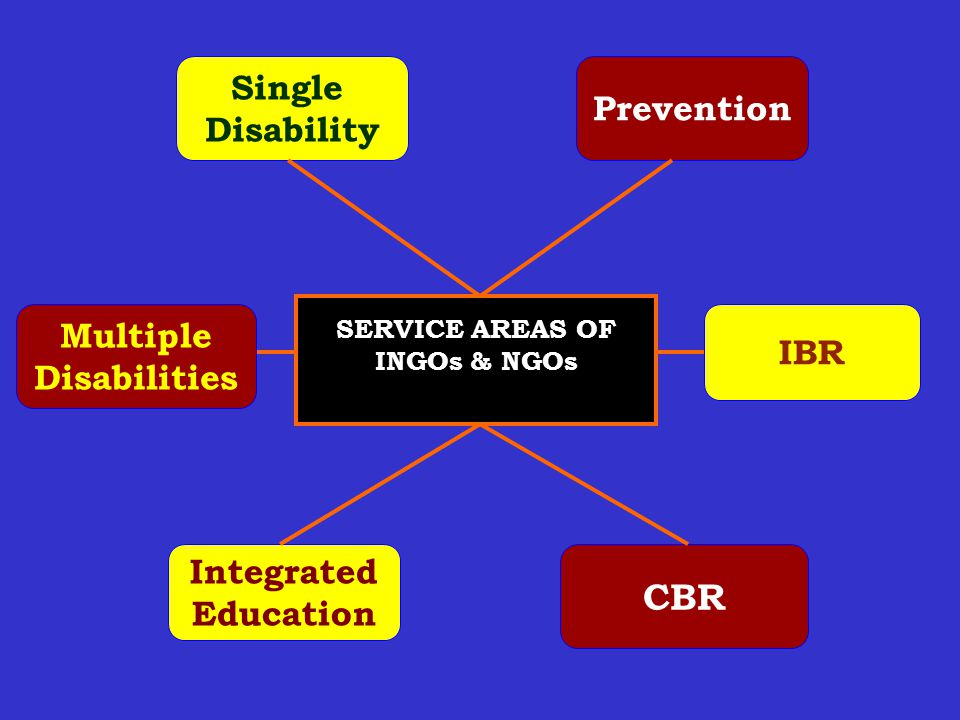 Single Disability Prevention Integrated Education CBR IBR Multiple Disabilities SERVICE AREAS OF INGOs & NGOs