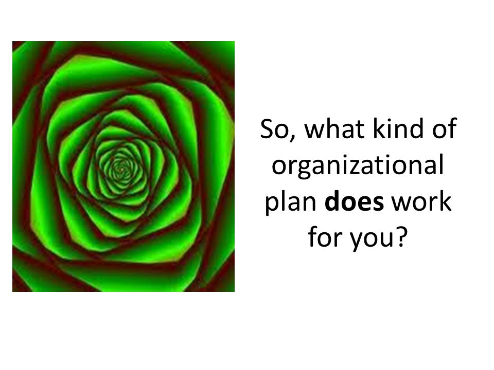 So, what kind of organizational plan does work for you