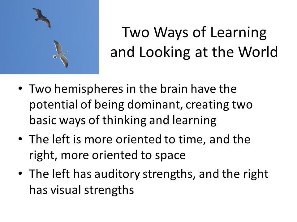 Two Ways of Learning and Looking at the World Two hemispheres in the brain have the potential of being dominant, creating two basic ways of thinking and learning The left is more oriented to time, and the right, more oriented to space The left has auditory strengths, and the right has visual strengths