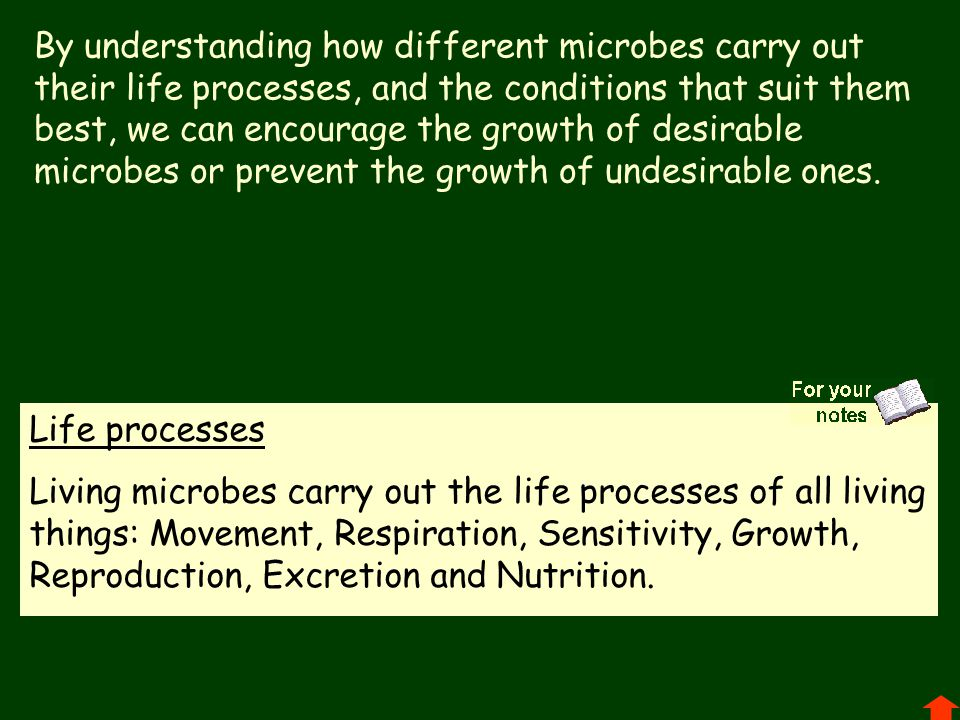 By understanding how different microbes carry out their life processes, and the conditions that suit them best, we can encourage the growth of desirab