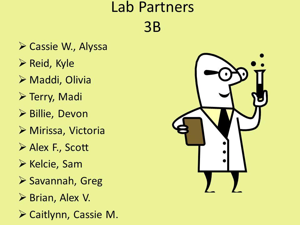 Lab Partners 3B  Cassie W., Alyssa  Reid, Kyle  Maddi, Olivia  Terry, Madi  Billie, Devon  Mirissa, Victoria  Alex F., Scott  Kelcie, Sam  Savannah, Greg  Brian, Alex V.