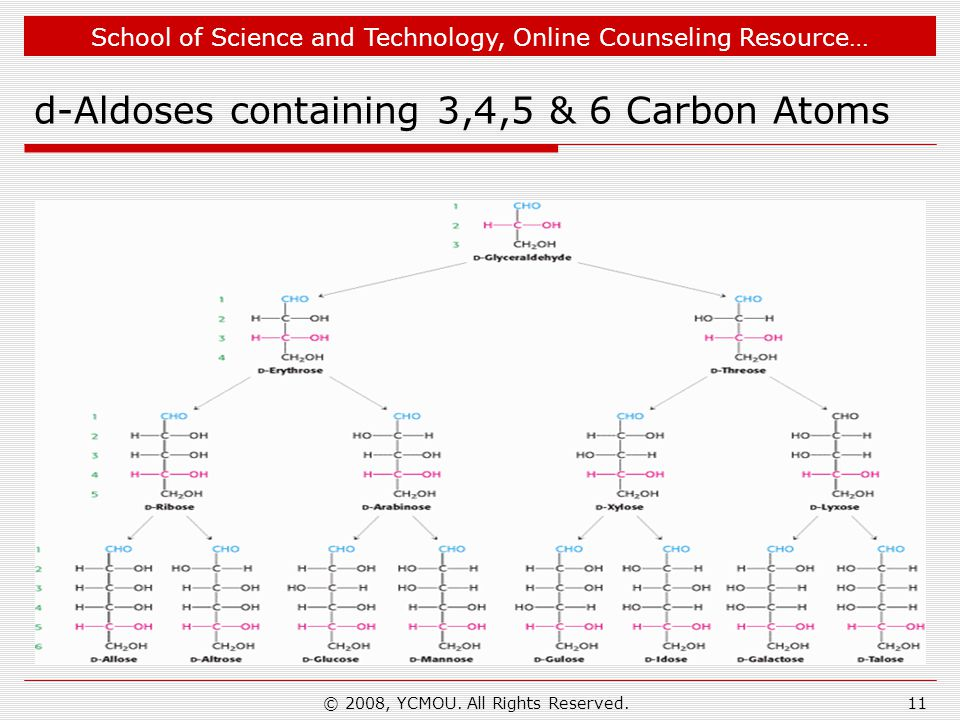 School of Science and Technology, Online Counseling Resource… d-Aldoses containing 3,4,5 & 6 Carbon Atoms © 2008, YCMOU. All Rights Reserved.11