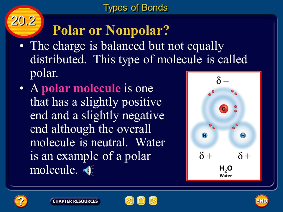 Tug-of-War 20.2 Types of Bonds Each atom in the molecule attracts the electrons that they share.