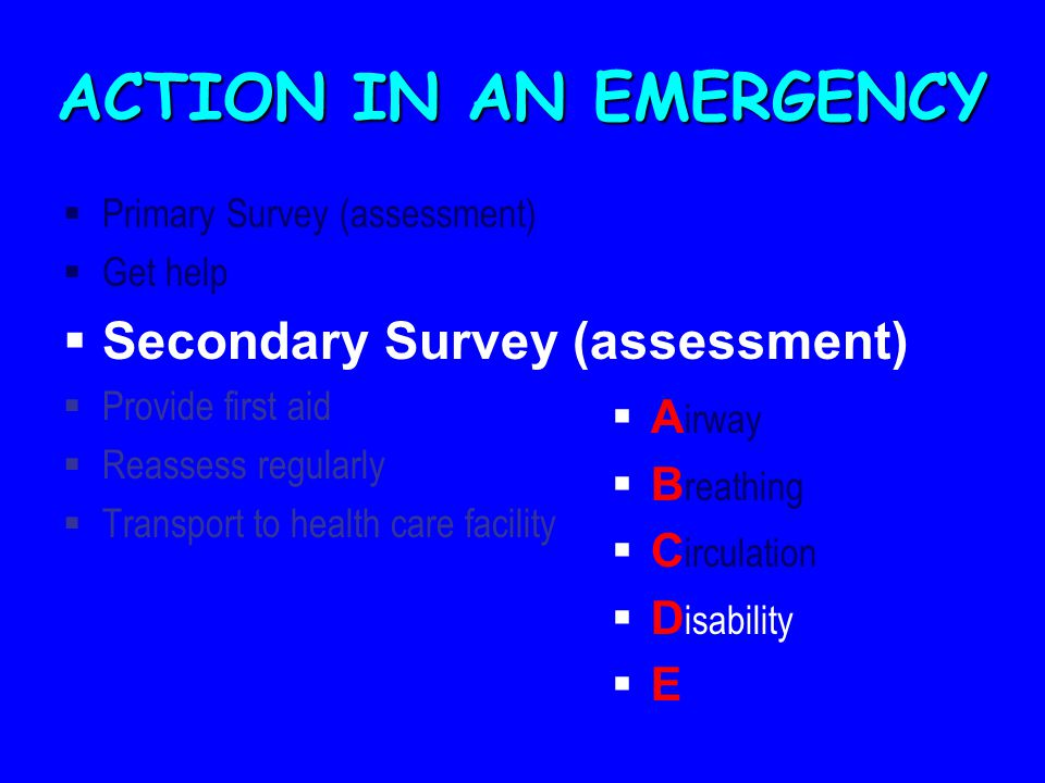 ACTION IN AN EMERGENCY  Primary Survey (assessment)  Get help  Secondary Survey (assessment)  Provide first aid  Reassess regularly  Transport to health care facility  A irway  B reathing  C irculation  D isability  E