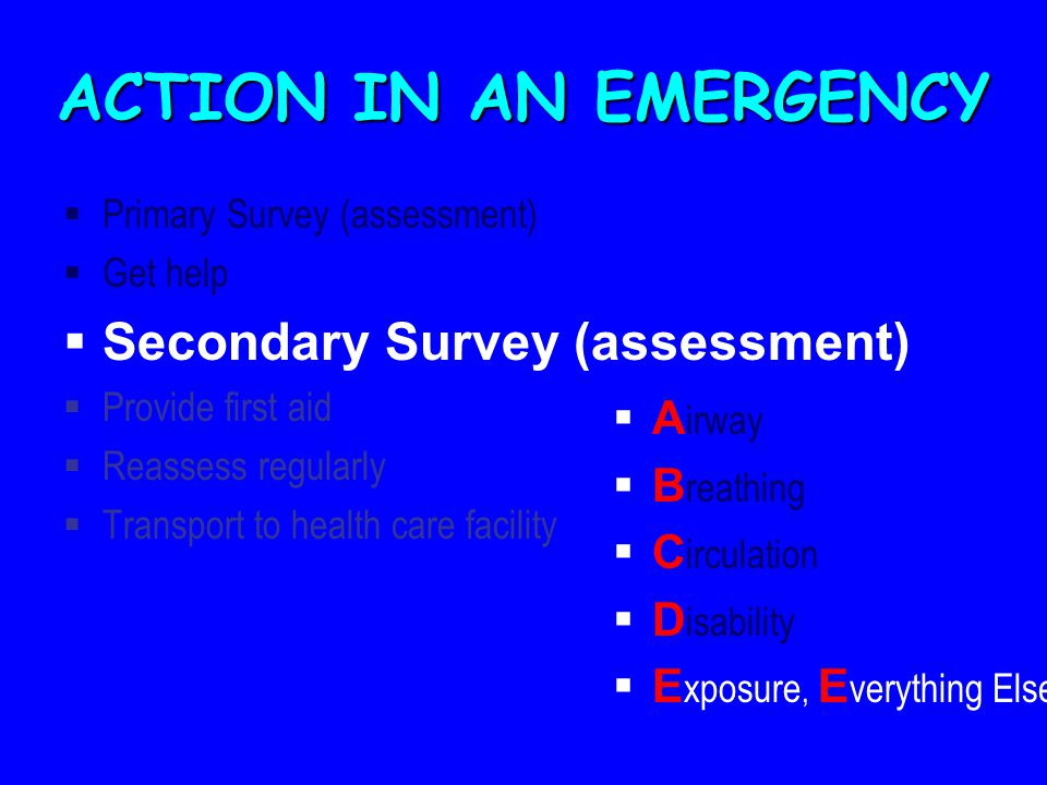ACTION IN AN EMERGENCY  Primary Survey (assessment)  Get help  Secondary Survey (assessment)  Provide first aid  Reassess regularly  Transport to health care facility  A irway  B reathing  C irculation  D isability  E xposure, E verything Else