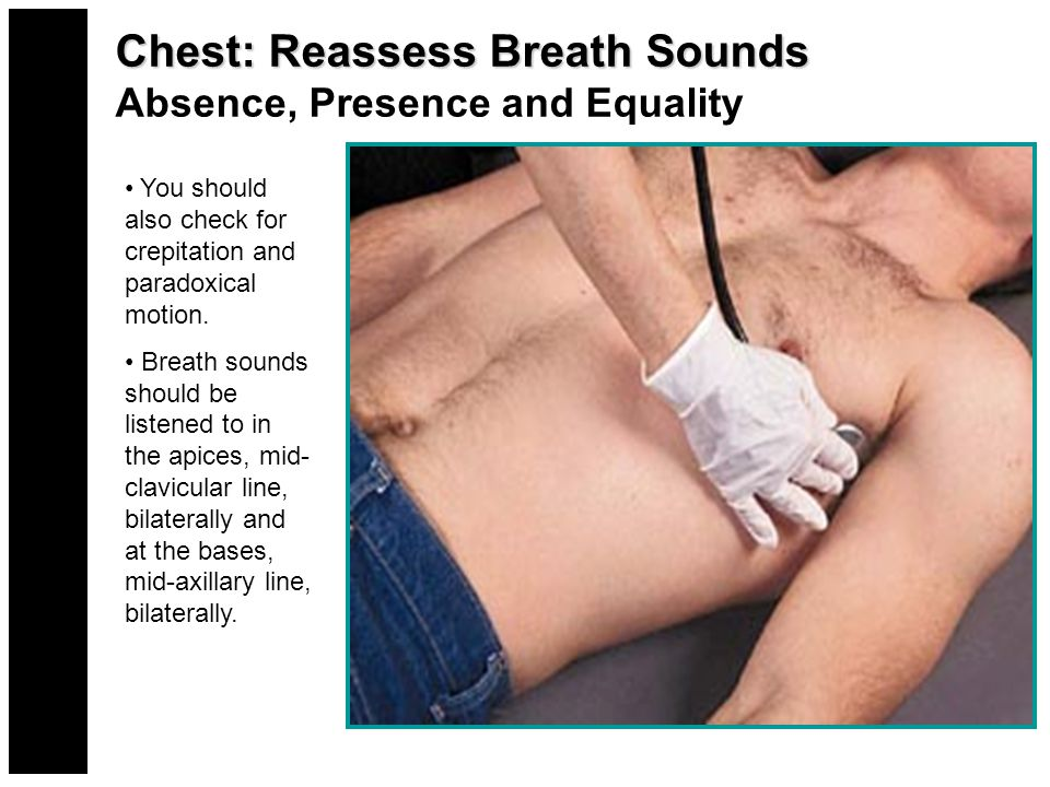 Chest: Reassess Breath Sounds Absence, Presence and Equality You should also check for crepitation and paradoxical motion.