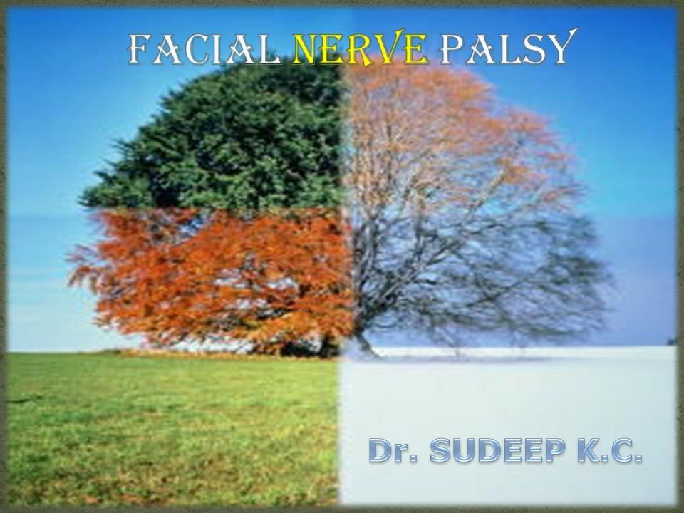 Localization of facial nerve lesion: Peripheral: Level of nucleus CPA level: Bony canal level: Topodiagnostics Outside the Temporal bone