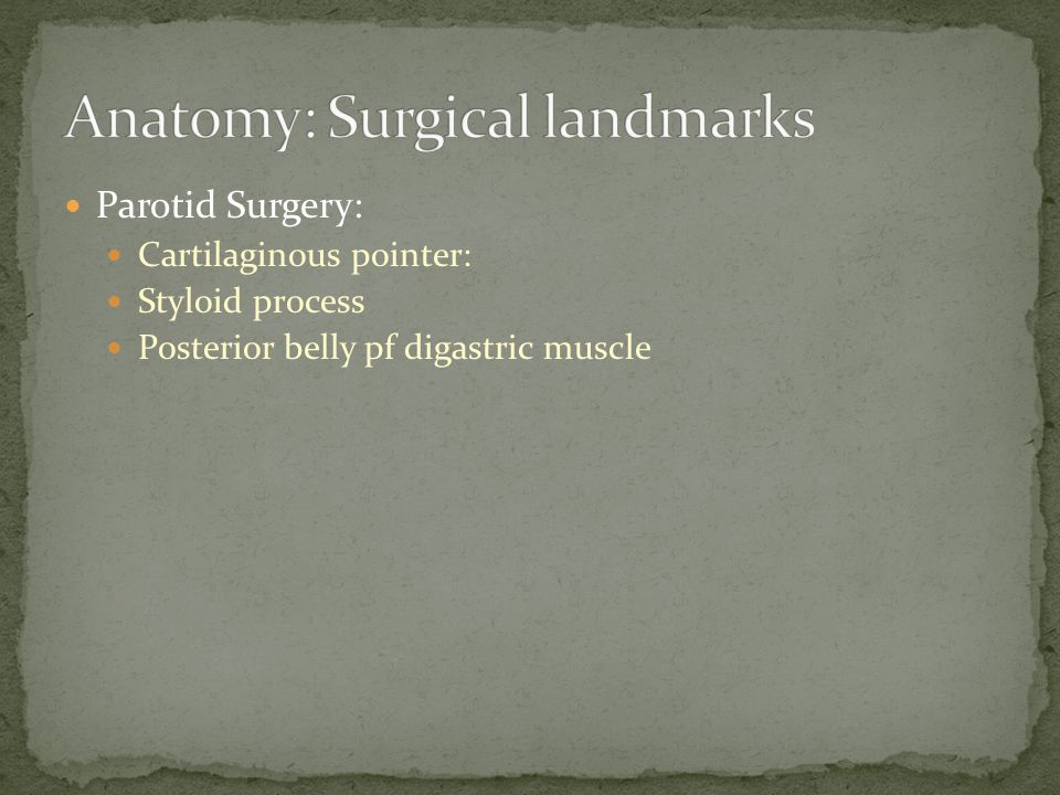 Parotid Surgery: Cartilaginous pointer: Styloid process Posterior belly pf digastric muscle