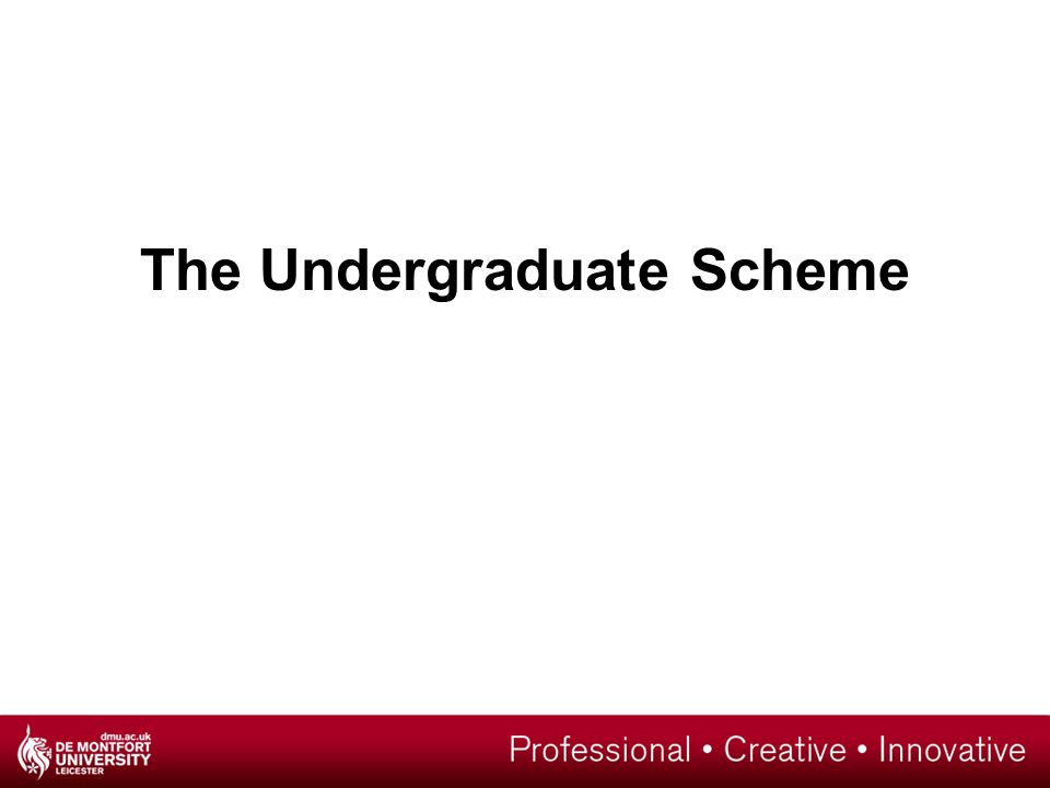 The Undergraduate Scheme