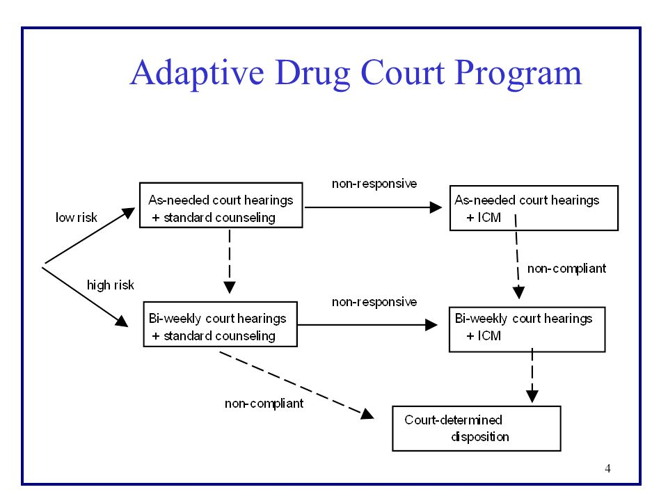 4 Adaptive Drug Court Program