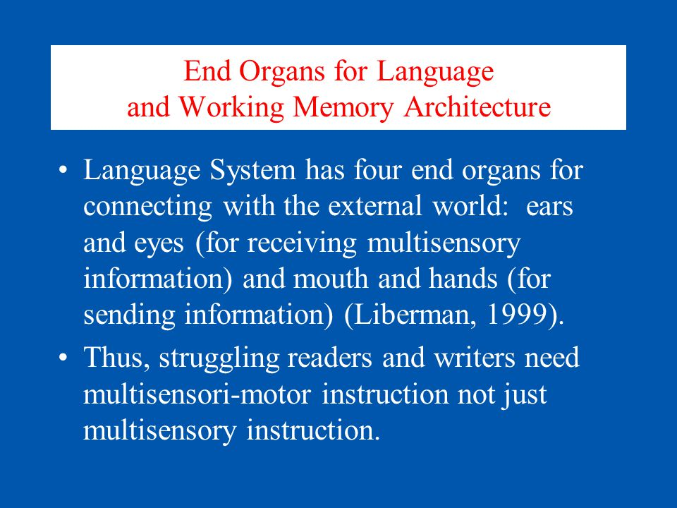 End Organs for Language and Working Memory Architecture Language System has four end organs for connecting with the external world: ears and eyes (for