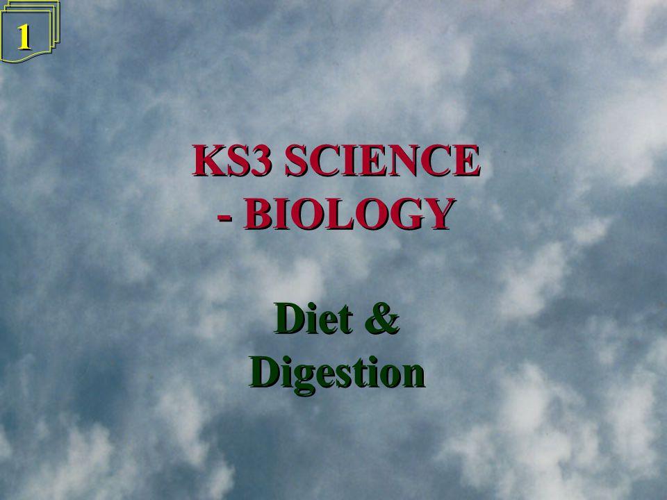 1 1 KS3 SCIENCE - BIOLOGY KS3 SCIENCE - BIOLOGY Diet & Digestion Diet & Digestion