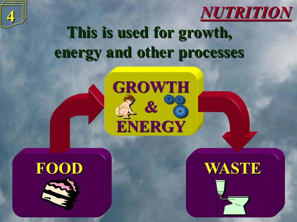 WASTEFOOD NUTRITION 4 4 This is used for growth, energy and other processes This is used for growth, energy and other processes GROWTH&ENERGY