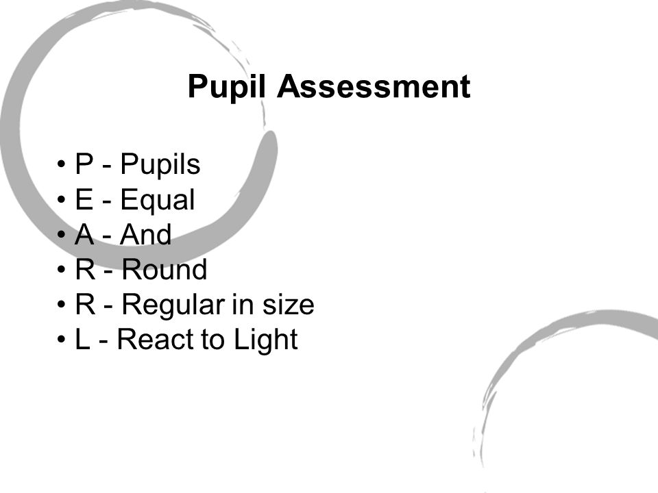 Pupil Assessment P - Pupils E - Equal A - And R - Round R - Regular in size L - React to Light
