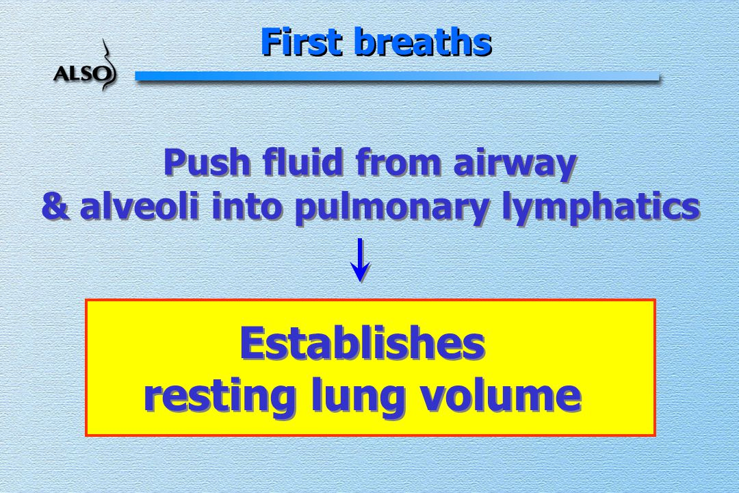 First breaths Push fluid from airway & alveoli into pulmonary lymphatics Push fluid from airway & alveoli into pulmonary lymphatics Establishes resting lung volume Establishes resting lung volume