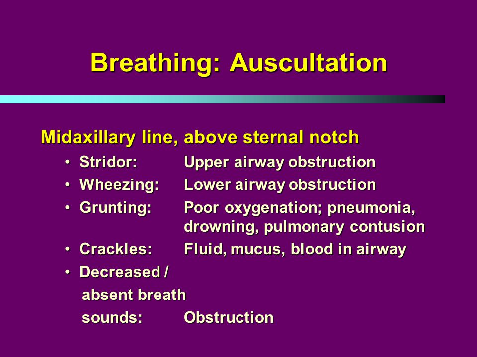 Breathing: Auscultation Midaxillary line, above sternal notch Stridor: Upper airway obstructionStridor: Upper airway obstruction Wheezing: Lower airway obstructionWheezing: Lower airway obstruction Grunting: Poor oxygenation; pneumonia, drowning, pulmonary contusionGrunting: Poor oxygenation; pneumonia, drowning, pulmonary contusion Crackles: Fluid, mucus, blood in airwayCrackles: Fluid, mucus, blood in airway Decreased /Decreased / absent breath absent breath sounds: Obstruction sounds: Obstruction