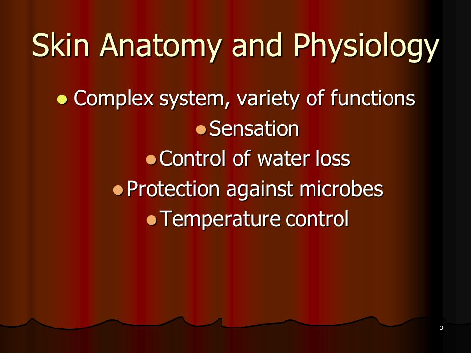 3 Skin Anatomy and Physiology Complex system, variety of functions Complex system, variety of functions Sensation Sensation Control of water loss Control of water loss Protection against microbes Protection against microbes Temperature control Temperature control