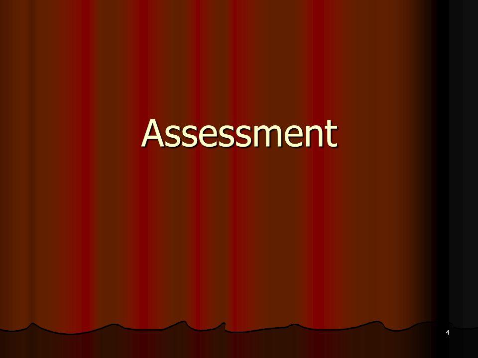 4 Assessment