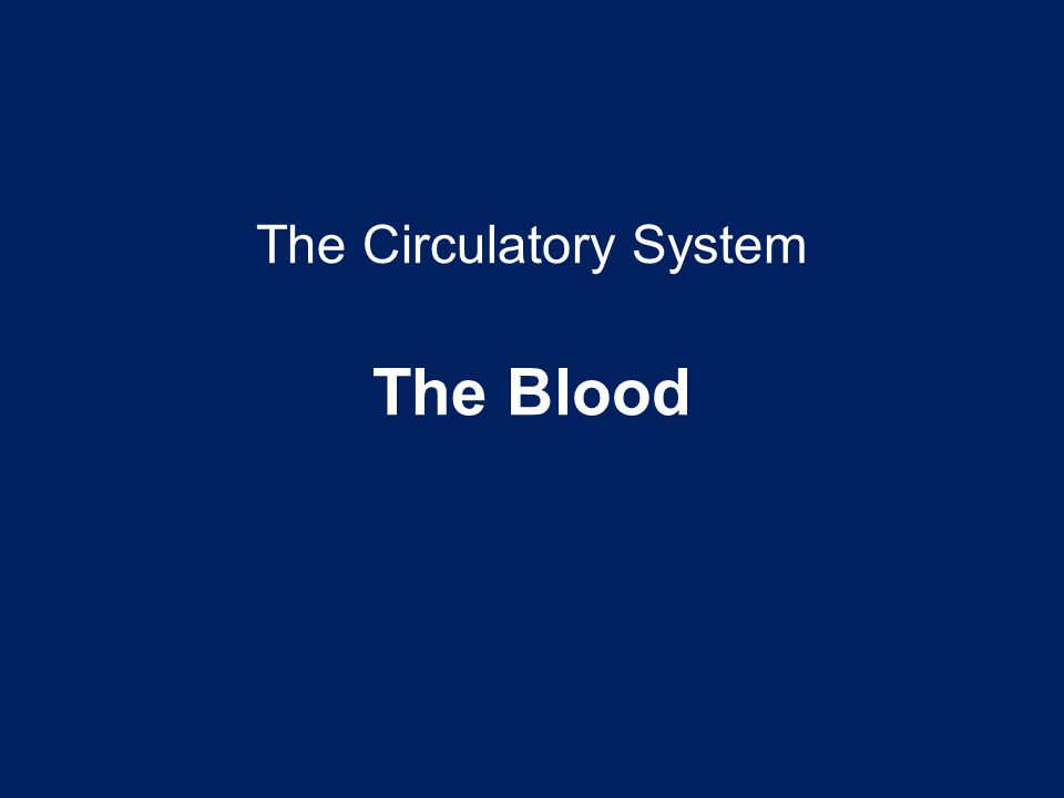 The Circulatory System The Blood