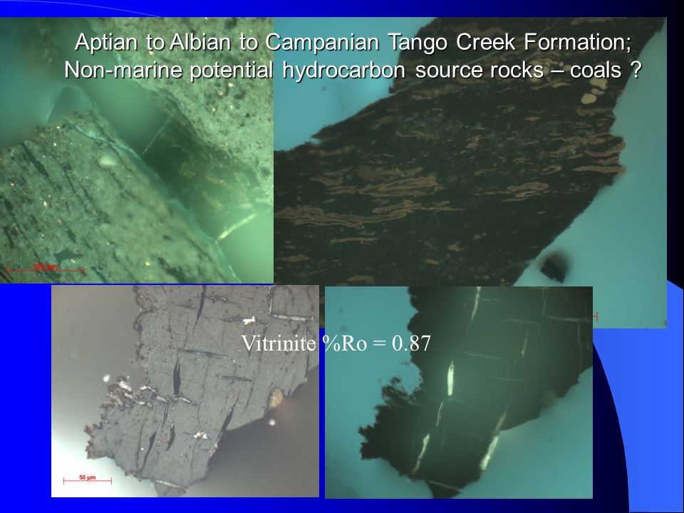 Vitrinite %Ro = 0.87 Aptian to Albian to Campanian Tango Creek Formation; Non-marine potential hydrocarbon source rocks – coals ?