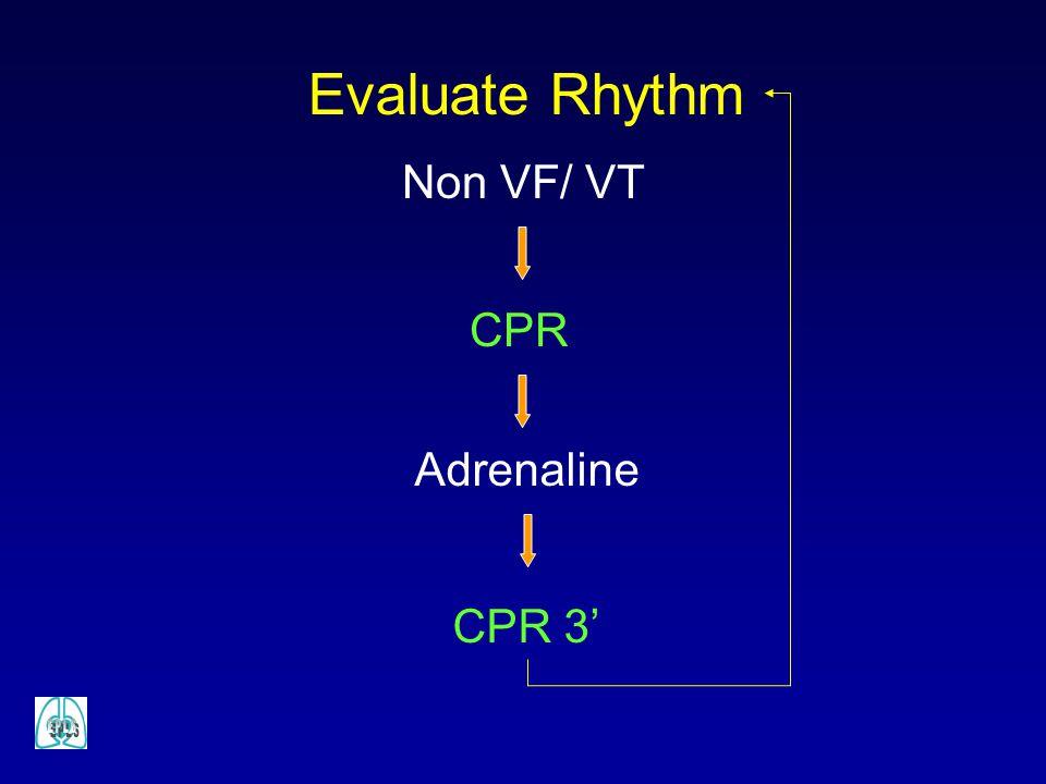 Evaluate Rhythm Non VF/ VT Adrenaline CPR 3' CPR