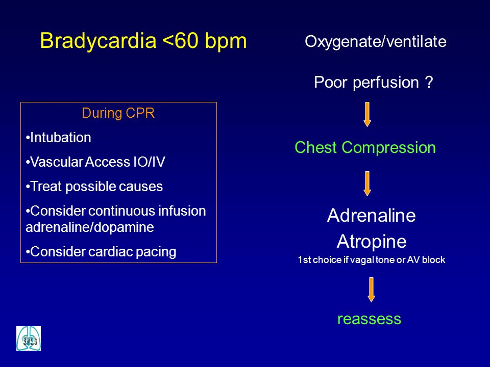 Bradycardia <60 bpm Poor perfusion ? Adrenaline Atropine 1st choice if vagal tone or AV block reassess Chest Compression Oxygenate/ventilate During CP
