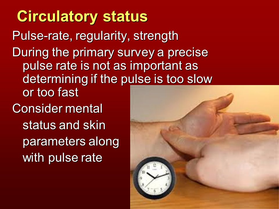 Circulatory status Pulse-rate, regularity, strength During the primary survey a precise pulse rate is not as important as determining if the pulse is too slow or too fast Consider mental status and skin parameters along with pulse rate
