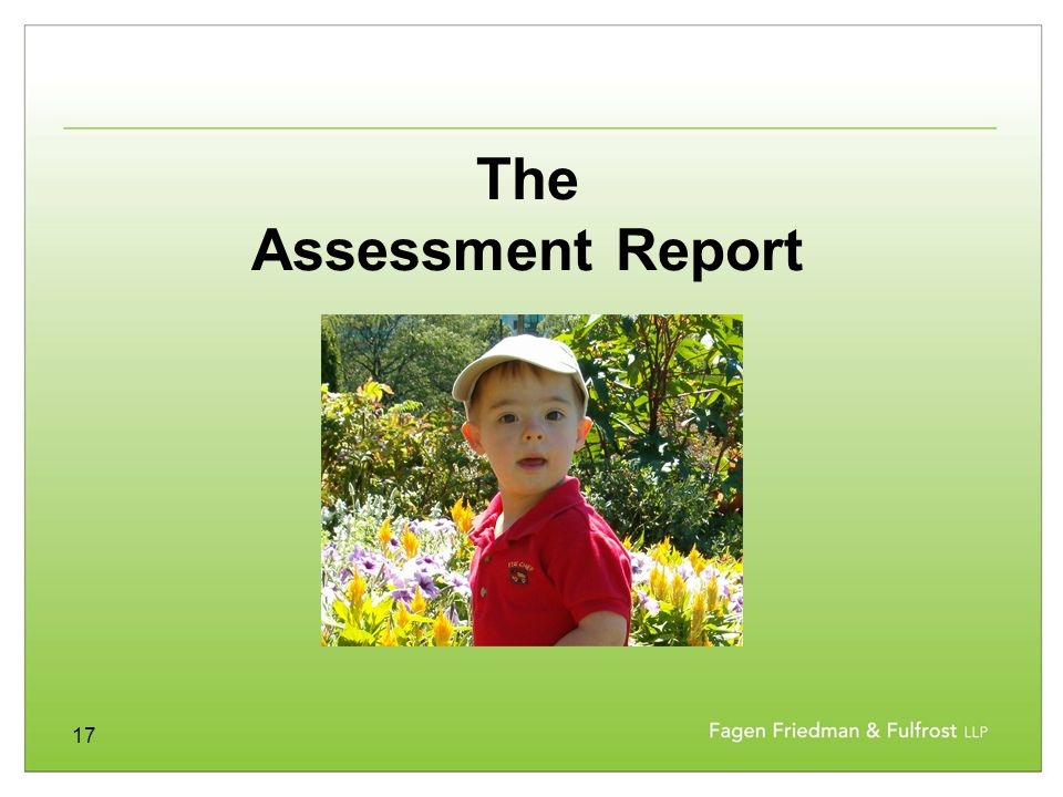 17 The Assessment Report