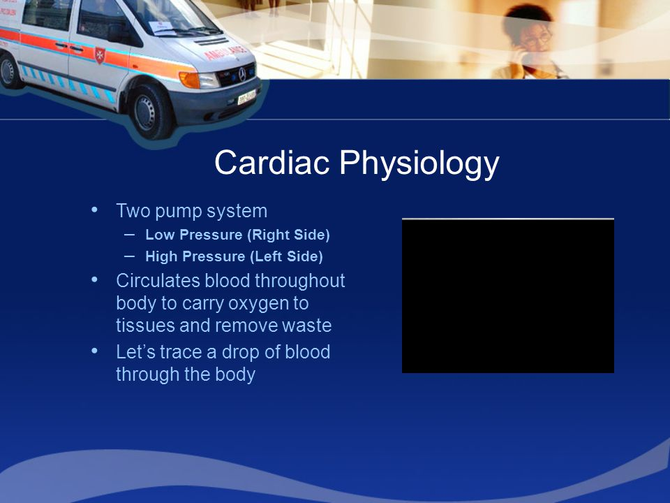 Cardiac Physiology Two pump system –Low Pressure (Right Side) –High Pressure (Left Side) Circulates blood throughout body to carry oxygen to tissues and remove waste Let's trace a drop of blood through the body