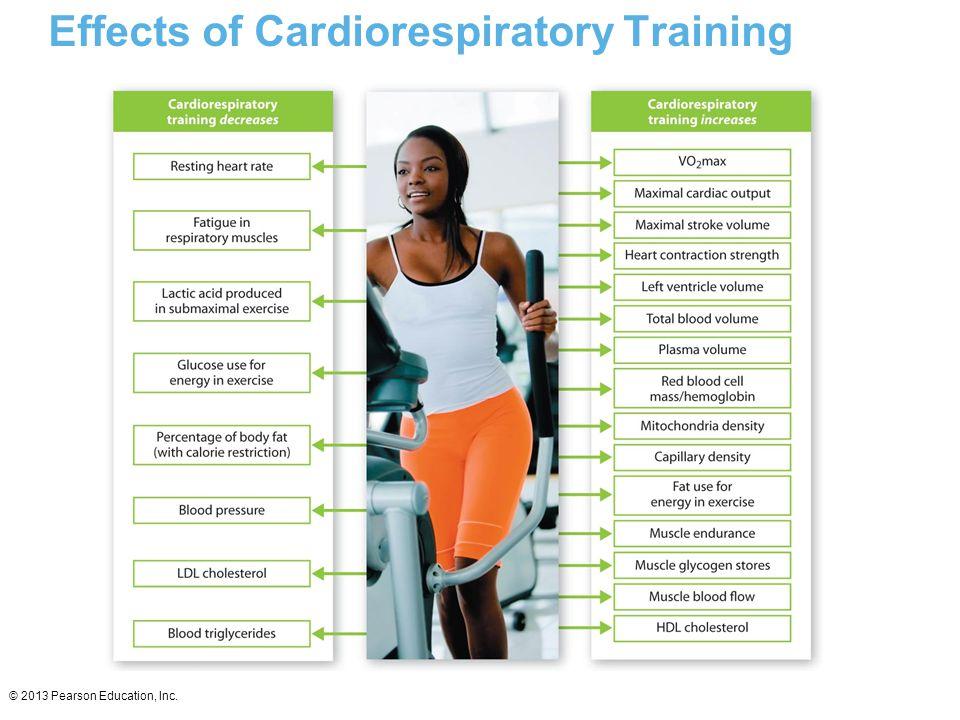 © 2013 Pearson Education, Inc. Effects of Cardiorespiratory Training